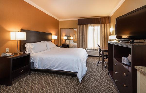 Single King Room at Holiday Inn Express Castro Valley